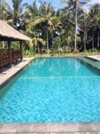 Laura's Bali Adventure