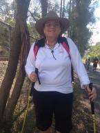 Linda's Camino Walk 2014