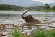 Mareike in Südostasien