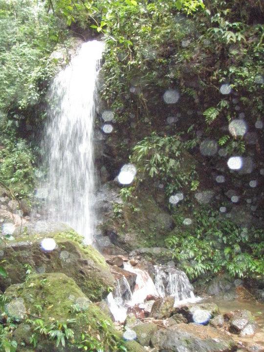 Cerro Azul-Meambar national park, Lago Yoloa Honduras