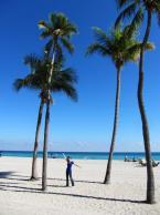 Florida 2011_12
