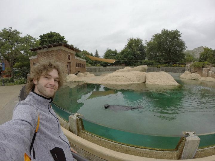 Lincoln Park Zoo - Zeehond selfie