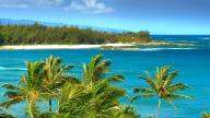 Mike's Hawaii Life