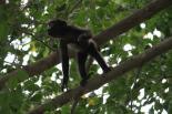 Keenan Family Adventure - Nicaragua/Costa Rica