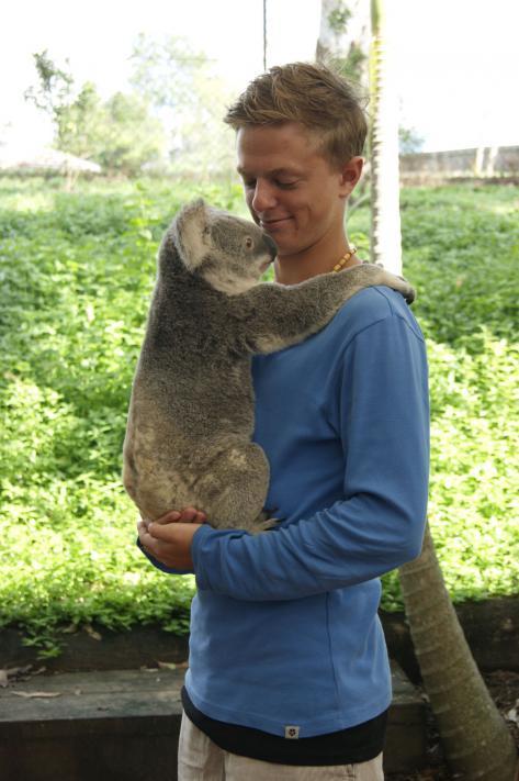 Koalakos