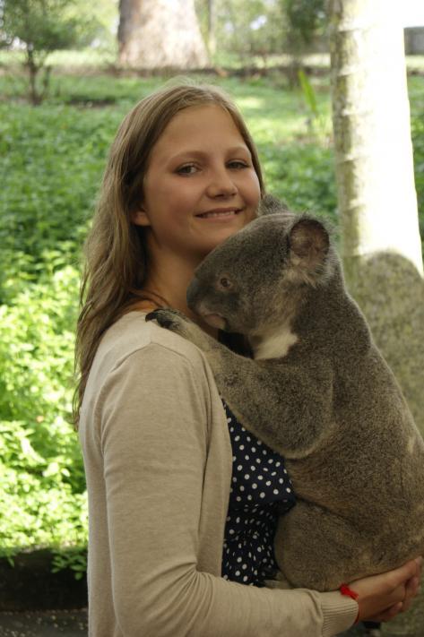 Mer Koala