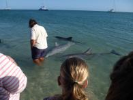 The Benno's Big Lap