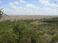 vication to Kenya