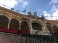 Seville 2014