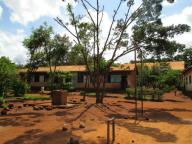 Tanzania Diaries