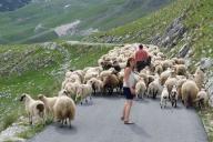 Montenegro - Study Week Abroad '12