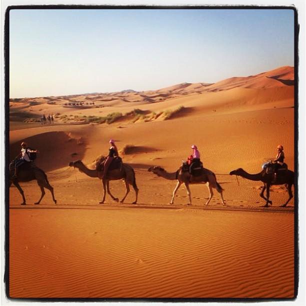 Viajes Al Desierto's Travels