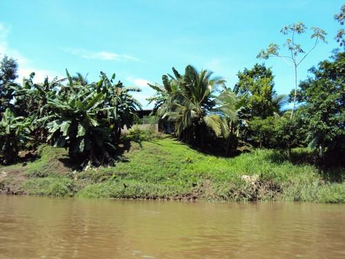 sarapiqur river