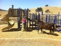 Central Coast Playgrounds