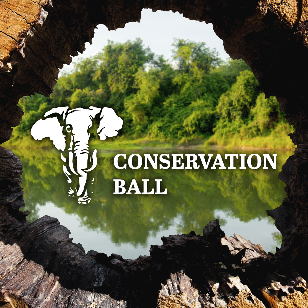 Conservation Ball 2018 Branding