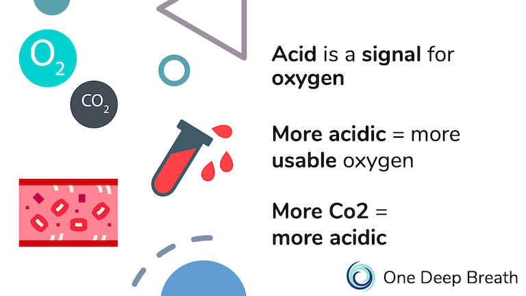 The more acidic and area is, the more oxygen the area will use from the bloodstream and breath.