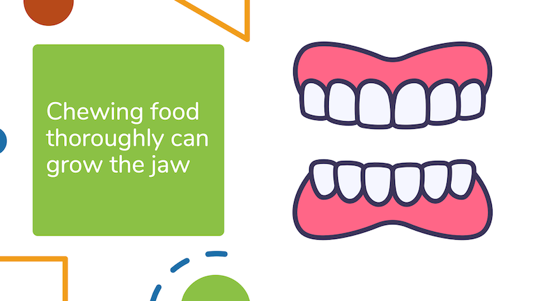 Chewing your food thoroughly and completely can stimulate the growth of stem cells and expand the jaw.