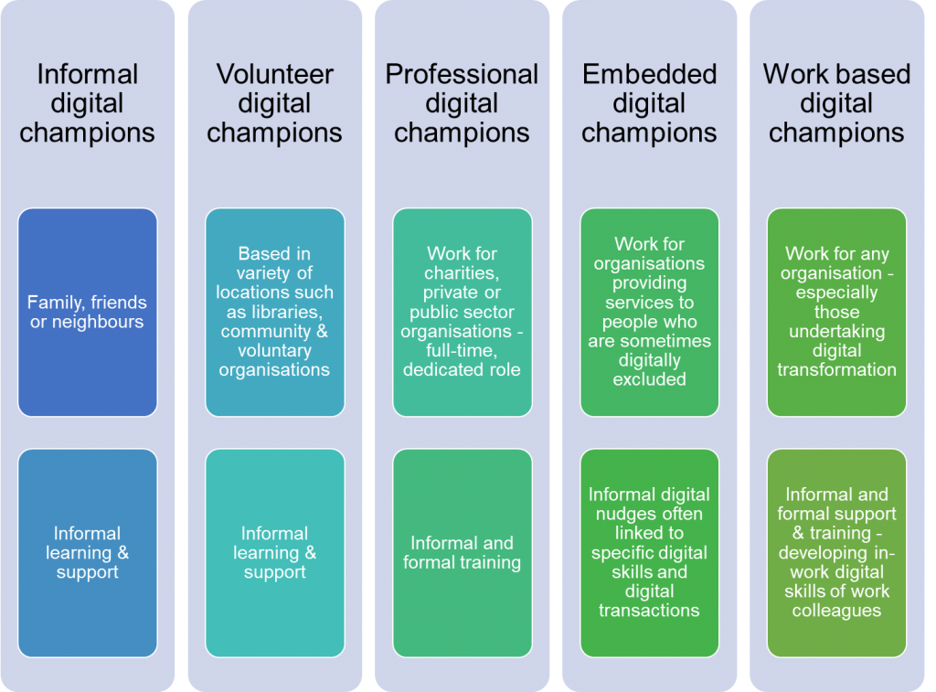 Digital champions model infographic