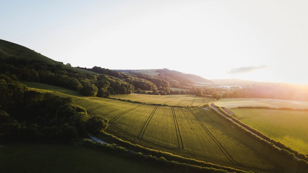 Image: Photo of Didling, West Sussex. Photo credit = Sam Knight (image sourced from Unsplash)