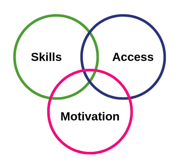 Graphic: The three main barriers to Digital Inclusion and participation are lack of skills, access or motivation.