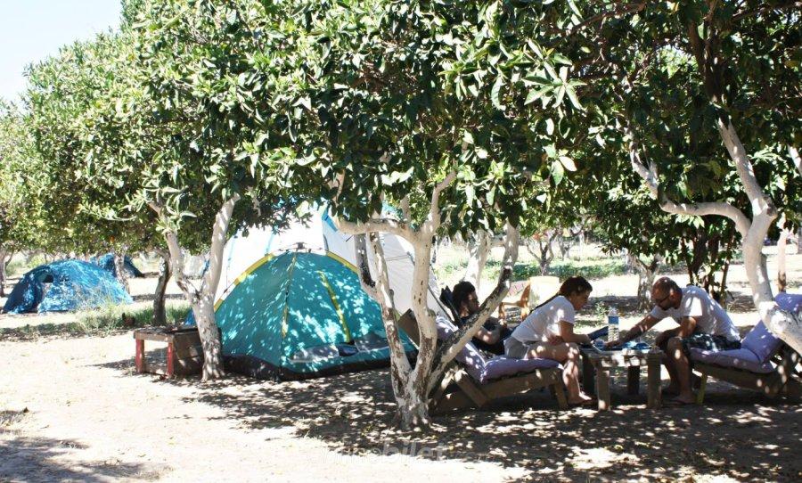 ecofarm kamp