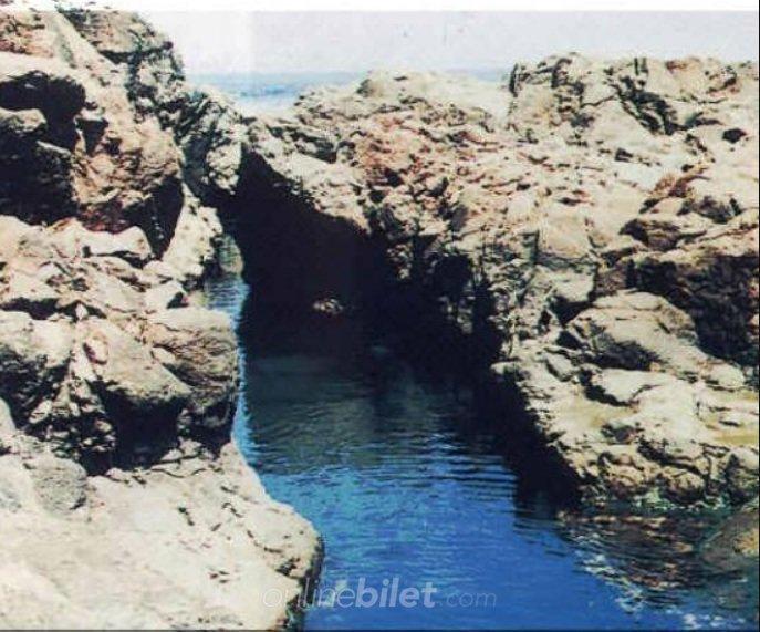 fokfok deniz