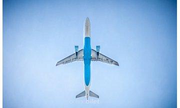 Dünya'nın En Büyük Havayolu Firmaları