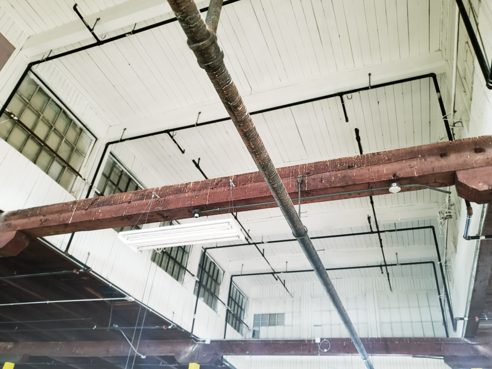 Industrial beams covered in bird droppings.