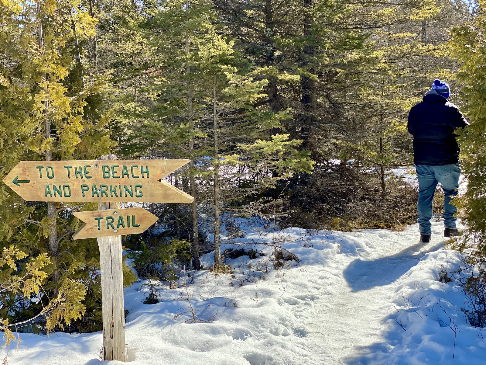 Trail at The Ridges