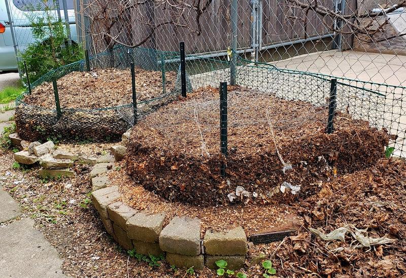 renee's compost