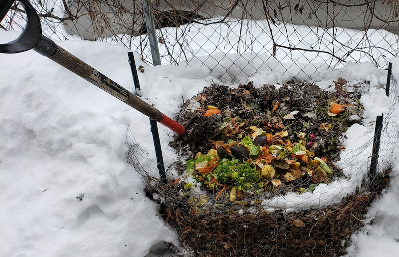 compost in winter