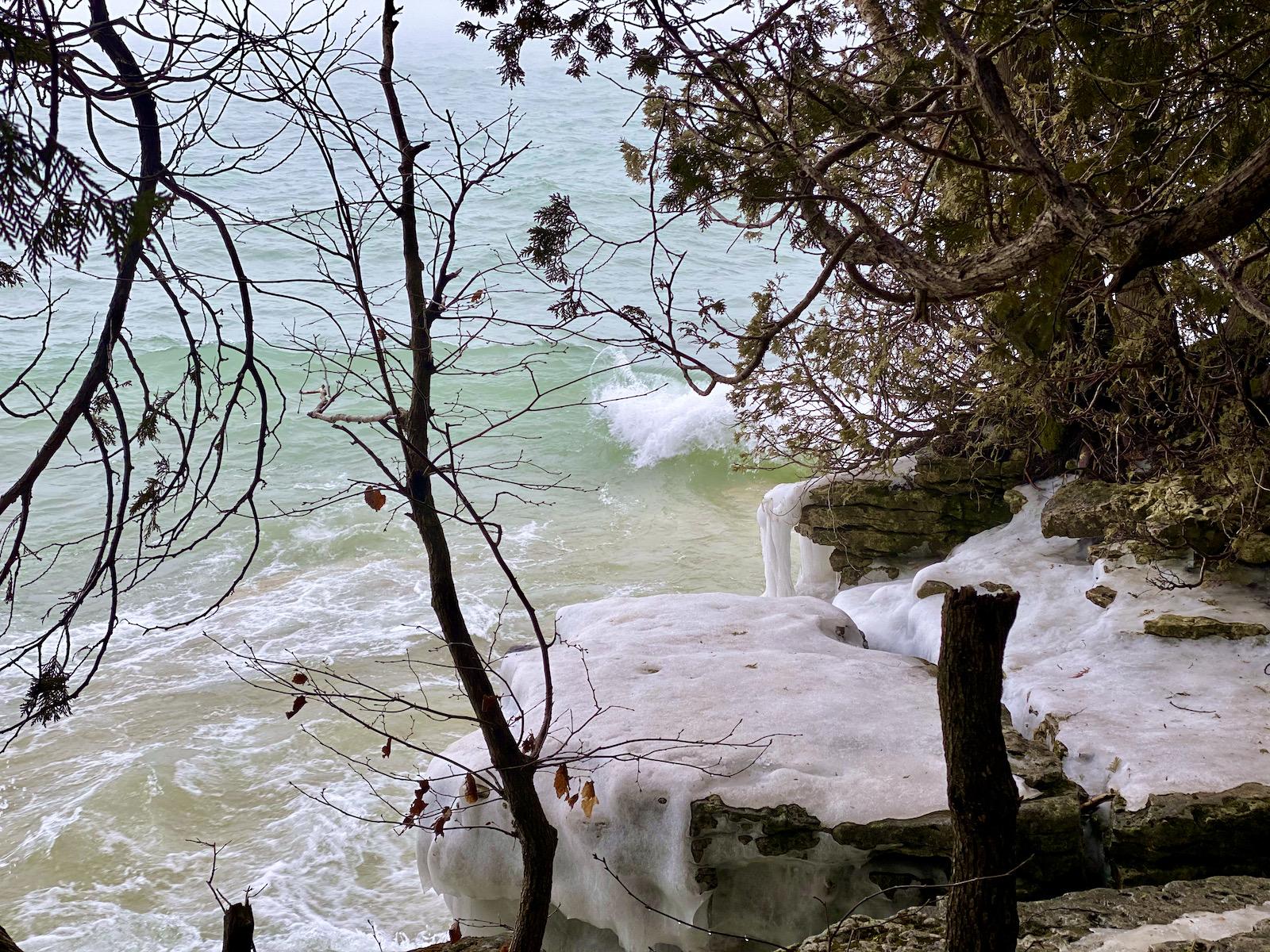 Lake Michigan through trees