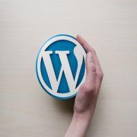 Leer werken met WordPress