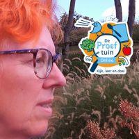 De Proeftuin Online: Ontdek uw plek