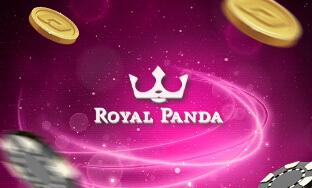 Royal Panda Review