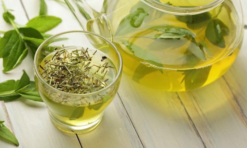 trà xanh giúp tăng sức đề kháng