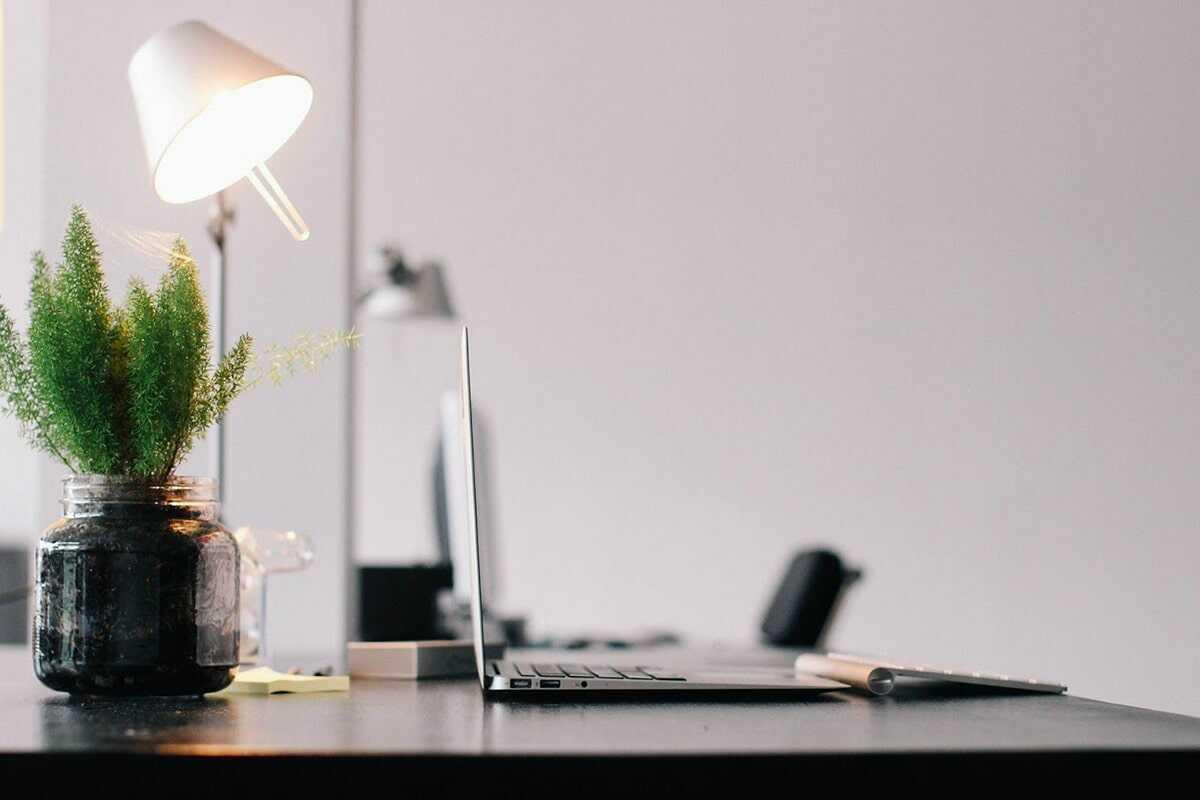 Cách trang trí bàn làm việc đẹp là nên để thêm chậu cây nhỏ, vừa bắt mắt vừa hút ánh sáng xanh, tốt cho sức khỏe.
