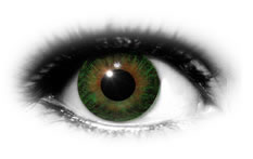 ADRIA UV 55 Green