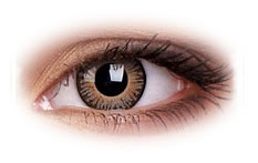 ColourVue 3 Tone Brown Contact Lenses