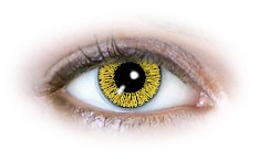 1 Tone Yellow (N138) Contact Lenses