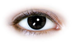Fluffy Black (N079) Contact Lenses