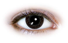 Neo Cosmo - Black Flames Contact Lenses (N529)