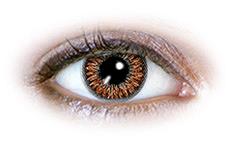 2 Tone Hazel (N227) Contact Lenses