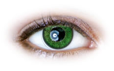 Green (N232) Contact Lenses
