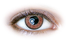 Hazel (N237) Contact Lenses