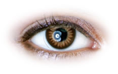 Neo Cosmo - Brown Color Ring Contact Lenses (N024)