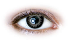 Neo Cosmo - Grey Colour Ring Contact Lenses (N025)