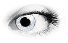 Queens Oros Ash Glance Contact Lenses