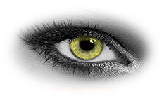 Queens Solitaire Yellow Toric Contact Lenses