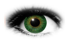 ADRIA 38 Color Green | Adria Colored Contact Lenses